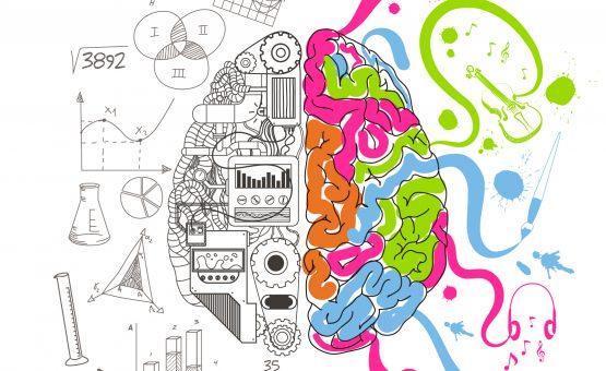 Creativity web development - Creativity 555x340 - Web Development